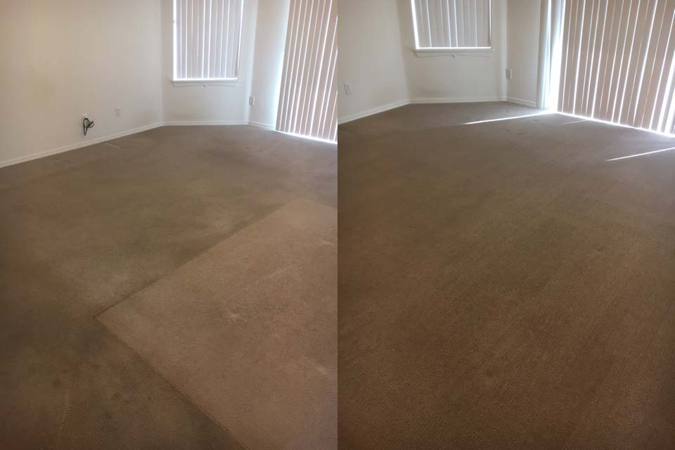 Fast carpet cleaning in AZ