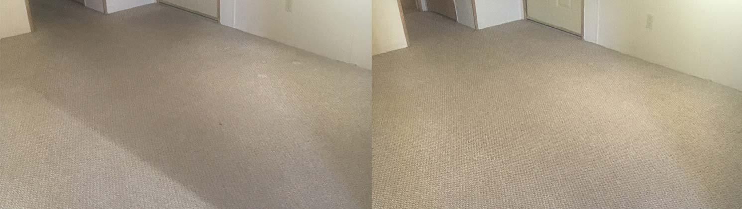 we clean carpets in AZ area